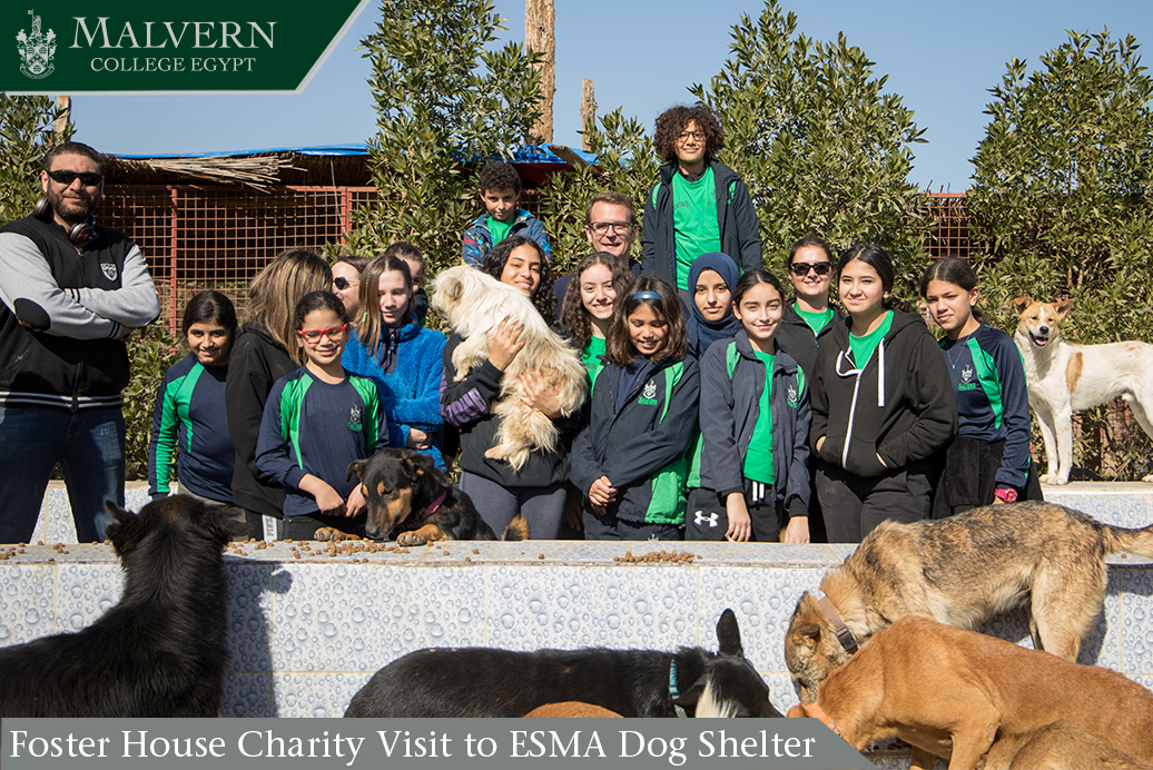 Foster House Charity Visit to ESMA Dog Shelter